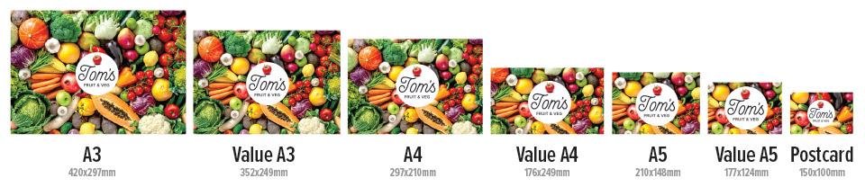 Value Size Flyers & Brochures